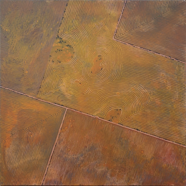 Drawing on the Land 2008, Scratching the Surface. Brigid Cole-Adams.