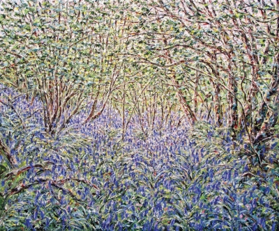 Bluebell Wood in Afternoon Light. Tessa Perceval.