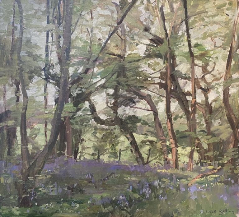 The Blue Bell Wood. Nick Botting.