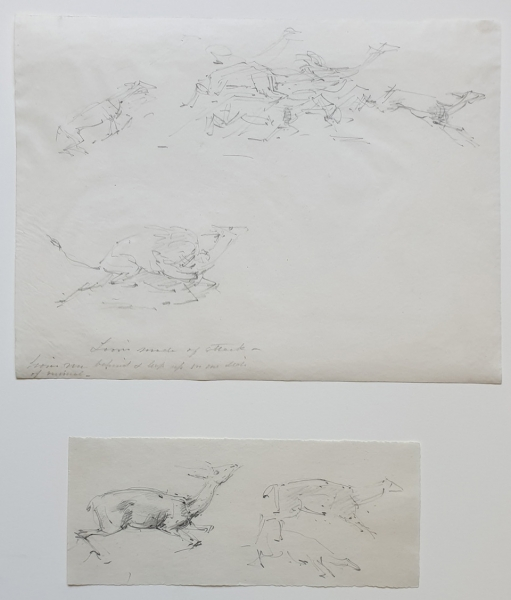 Lions Mode of Attack, Two Studies. William Strutt.