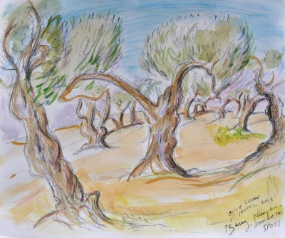 Olive Grove, St. Tropez 2013. Barry Humphries.