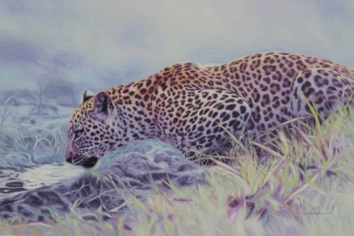 Leopard. William Sykes.