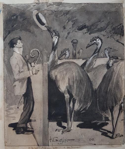 At the Zoo - Entertaining the Emus 1900. Harry Garlick.