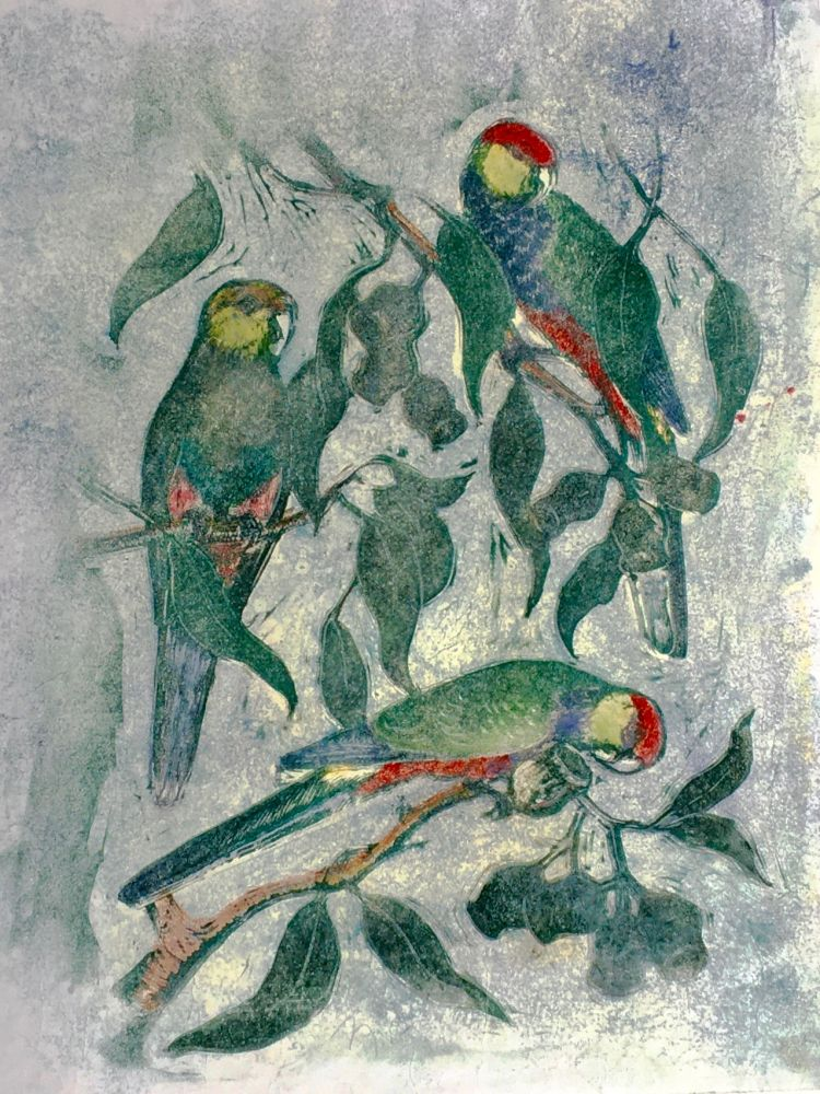 Red-Capped Parrot. Joyce Meier.
