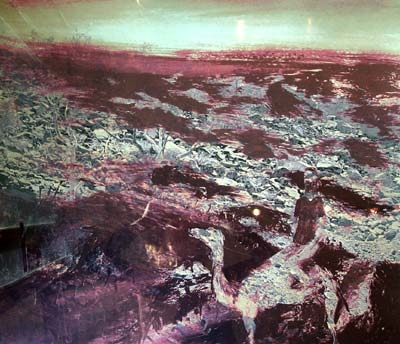 Burke and Wills Expedition II 1975. Sidney Nolan.