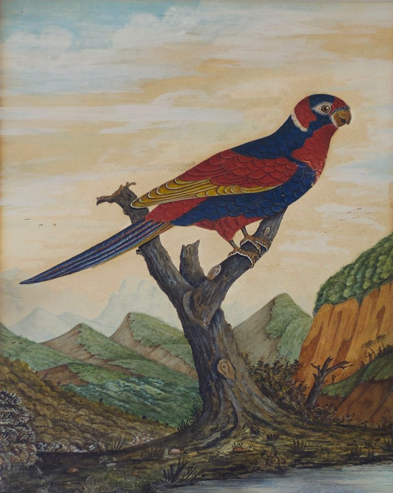 Parrot Perched in a Mountainous Landscape with Figures in the Distance circa 1800-1820. British School.