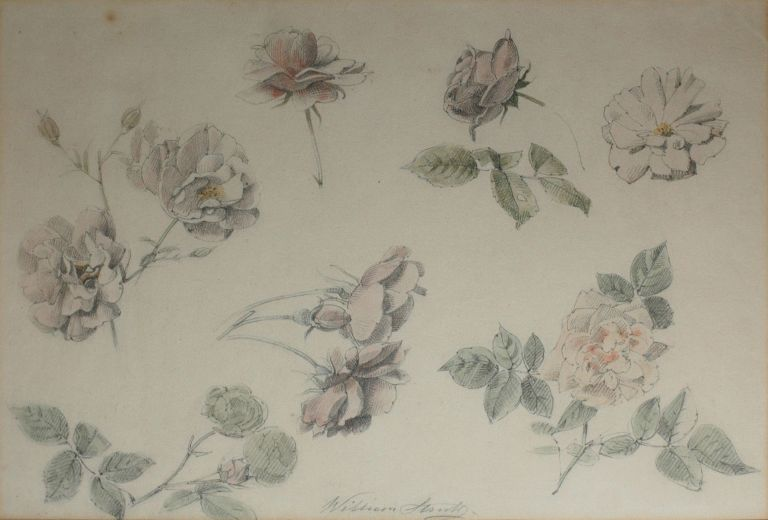 Study of Roses 1887. William Strutt.