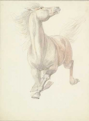 Study of a Charging Horse. William Strutt.