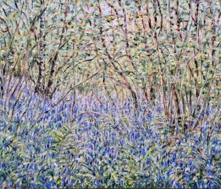 Bluebell Wood 2016. Tessa Perceval