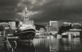 Greenpeace, Hobart. Peter Brown