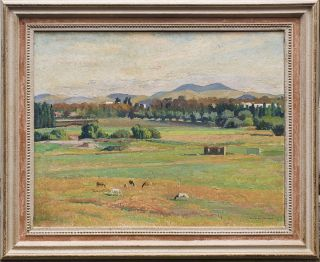 Late Afternoon, Acton Flats, Canberra 1956